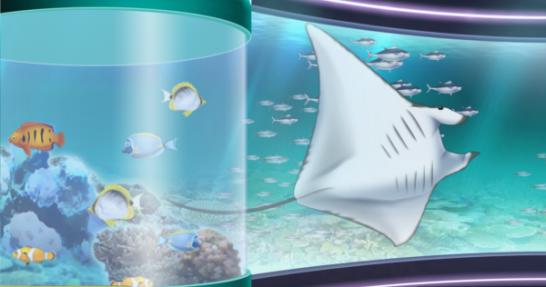 登場する海洋生物2
